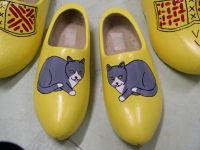 repainted wooden shoes